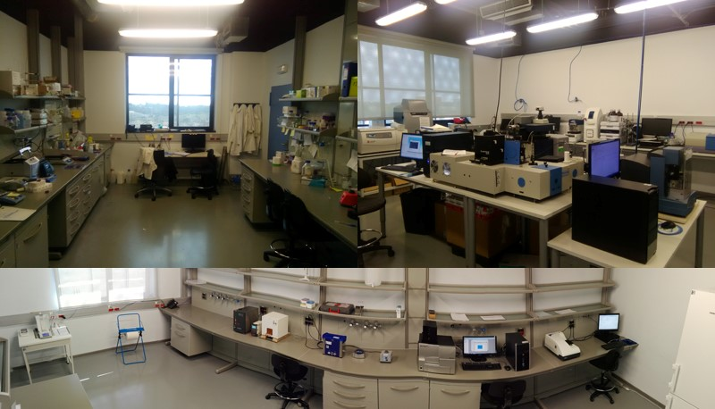 Laboratories of Protein Engineering and Nanobiotechnology
