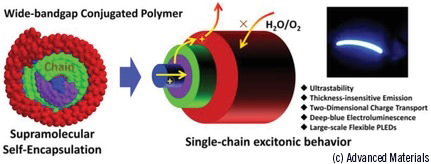 Insulated molecular wires: the smallest electric power cord