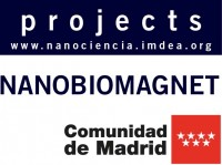 NANOBIOMAGNET Fundamentals and applications of molecules, magnetic nanoparticles and nanostructures:from spintronics to biomedicine