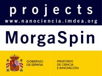 MorgaSpin Towards Multifunctional organic-based Spintronics